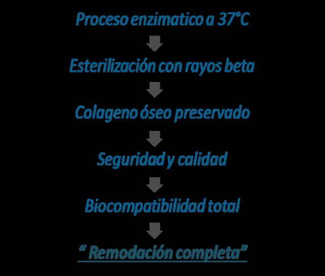 Proceso de productos Bioteck